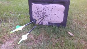 rinehart targets
